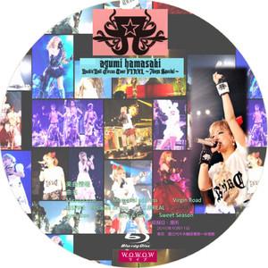 Hamasaki2012_bd