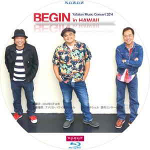 Begin_bd