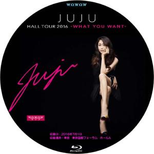 Juju_hall_tour2016bd